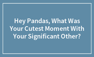 Hey Pandas, What Was Your Cutest Moment With Your Significant Other?