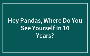 Hey Pandas, Where Do You See Yourself In 10 Years?