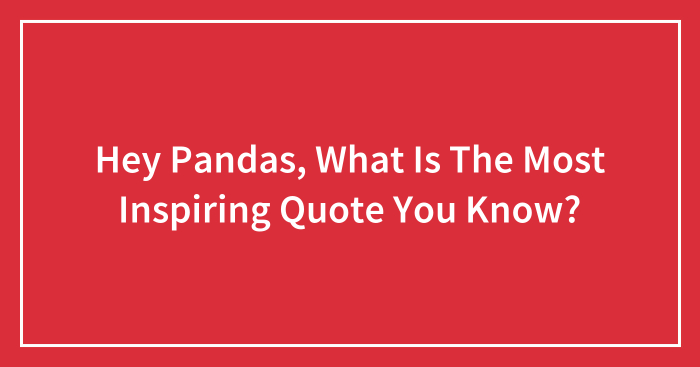 Hey Pandas, What Is The Most Inspiring Quote You Know? (Closed)