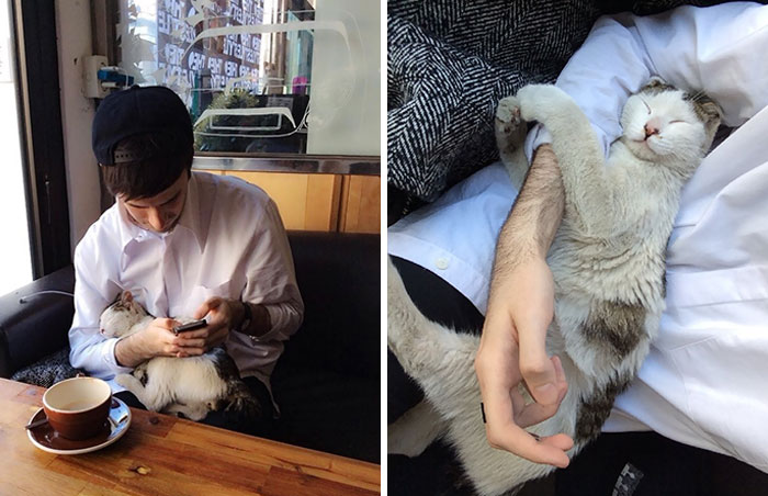 A Stray Cat Walked Into A Cafe And Decided To Take A Nap In My Arms