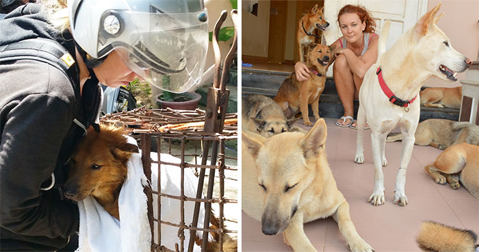 Vietnam's First Farm Sanctuary And Animal Rescue Helps All Kinds Of Animals Who Are Suffering From Cruelty And Neglect