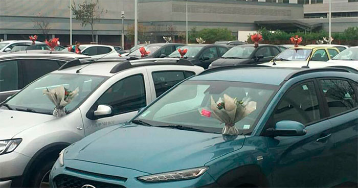 This Florist Places Hundreds Of Bouquets On Caregivers' Cars In A Hospital Parking Lot After Being Forced To Throw Away Unsold Flowers