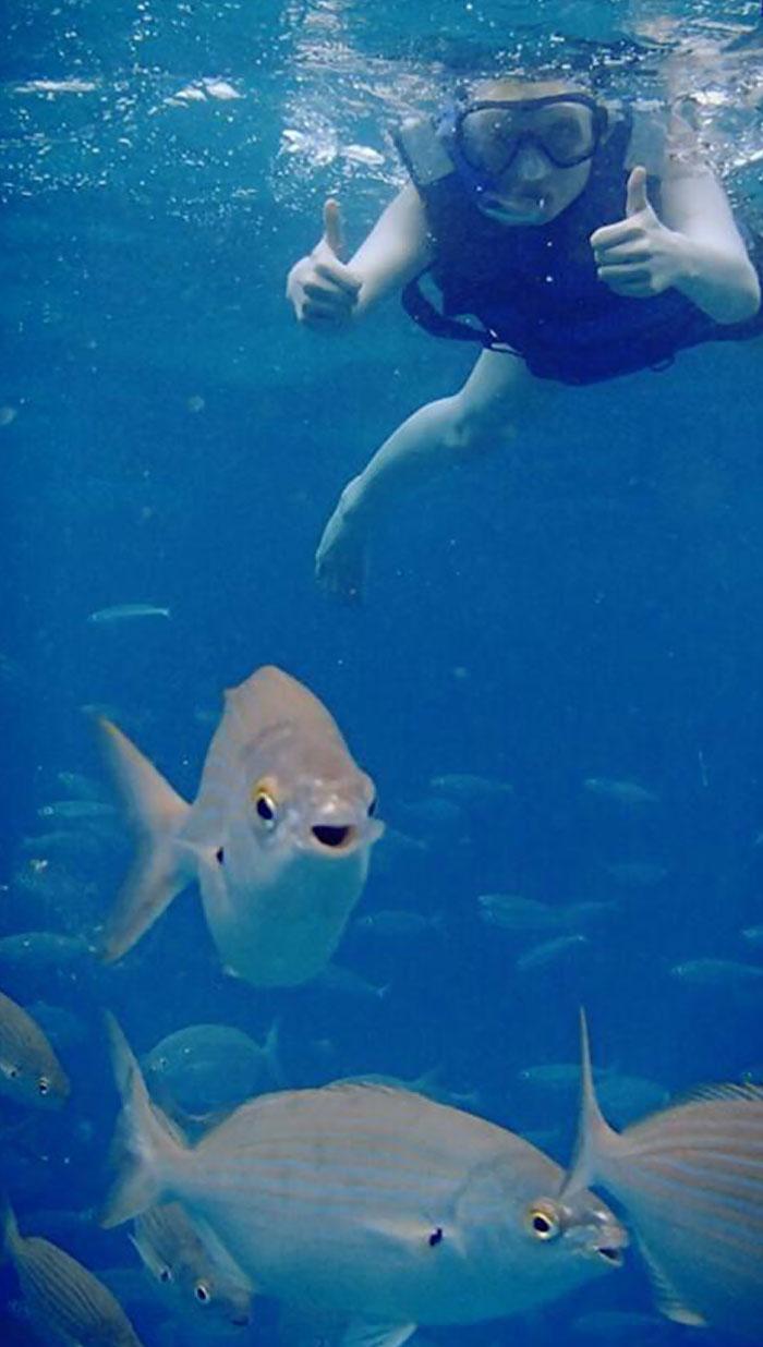 This Happy Fish Photobombing Me
