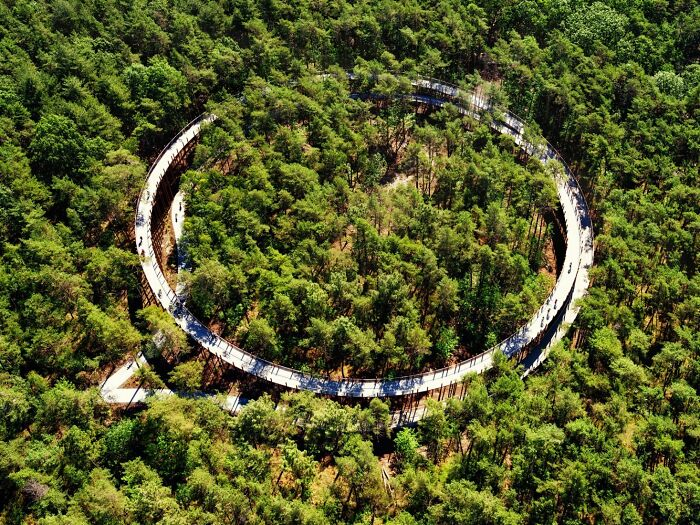 This 360-Degree Pathway In Belgium Lets You Cycle Through The Trees 32 Ft Above The Ground 10