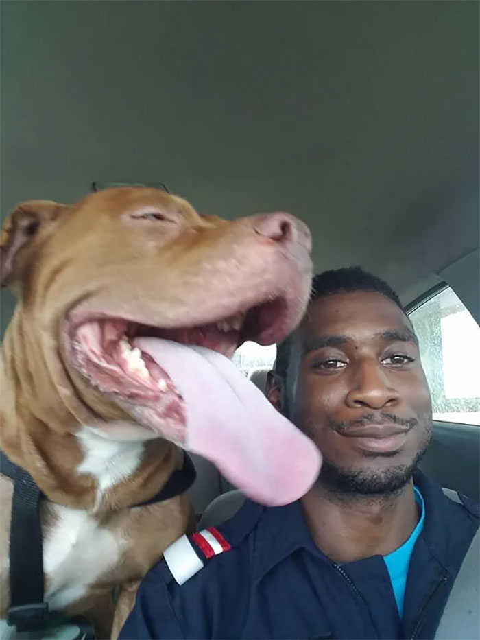 My Friend Found His Lost Dog After 2 Days Apart. First Pic Of Them Reunited