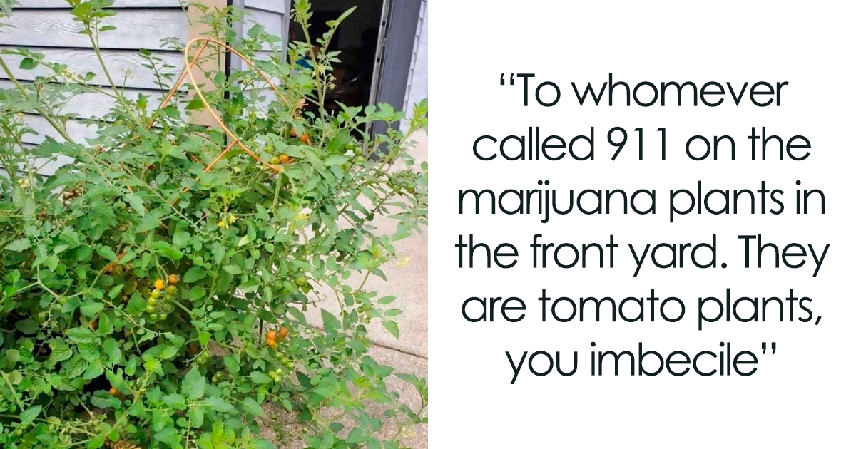 80 Of The Most Entertaining Neighbor Posts From...