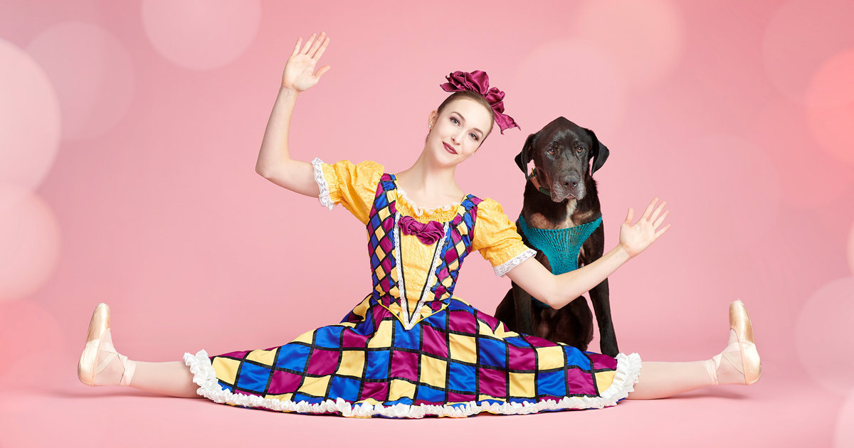 Ballet Dancers, Cats, And Dogs Pose Together For A Photoshoot And The Result Might Make Your Day (50 Pics)