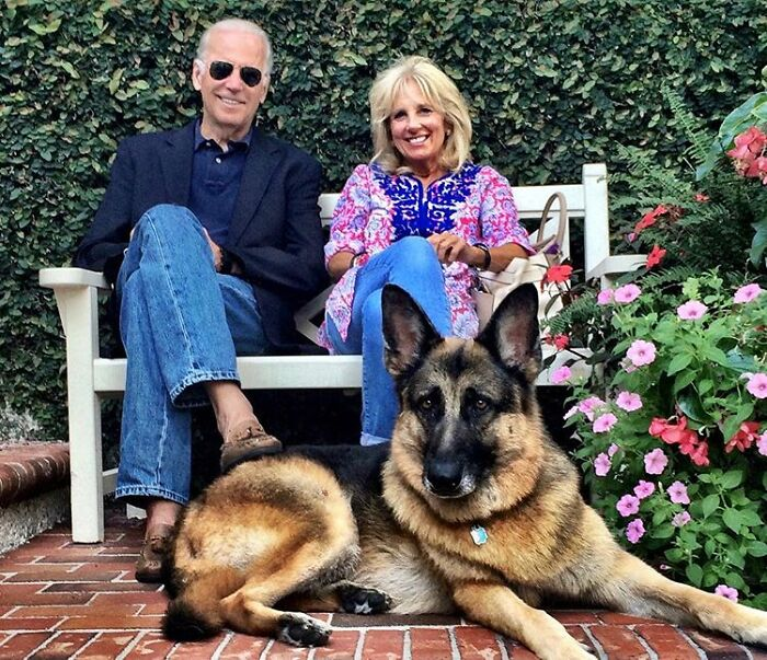 Turns Out, Joe Biden's Dog Major Will Be The First Shelter Dog To Live In The White House In History