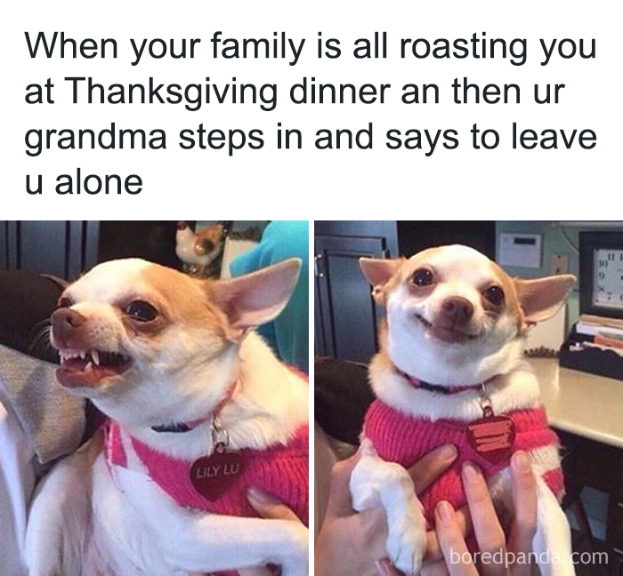 Thanksgiving-Memes-Jokes