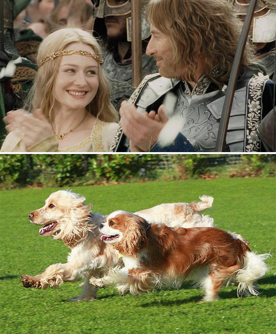 Éowyn And Faramir