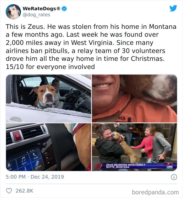 This Is Zeus