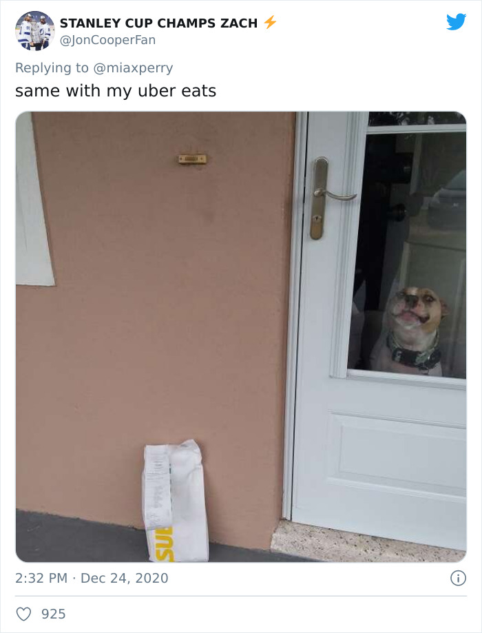 Pets-Collecting-Delivery-Items