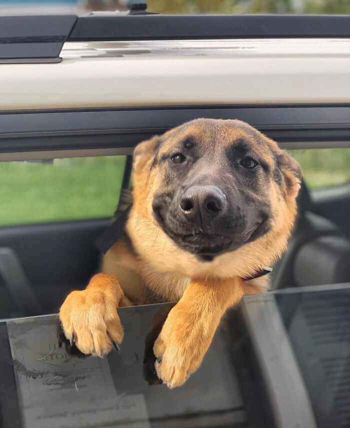 Went Through The Drive Through Where My Daughter Works And Heidi Was So Happy To See Her!