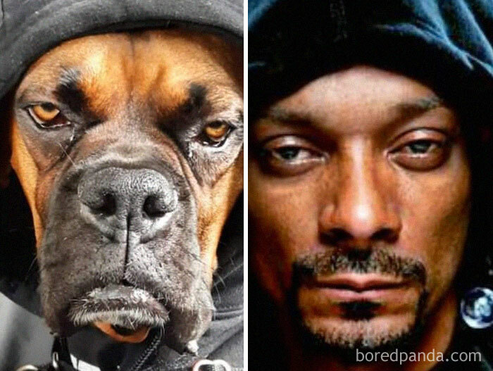 Basher Looks Like Snoop When He Wears His Hoodie