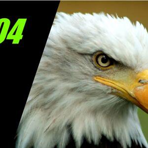 Eaglez404