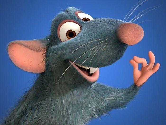 According To Brad Bird, Director Of Ratatouille (2007), He Chose Patton Oswalt To Voice Remy After Hearing One Of His Stand Up Routines About Food