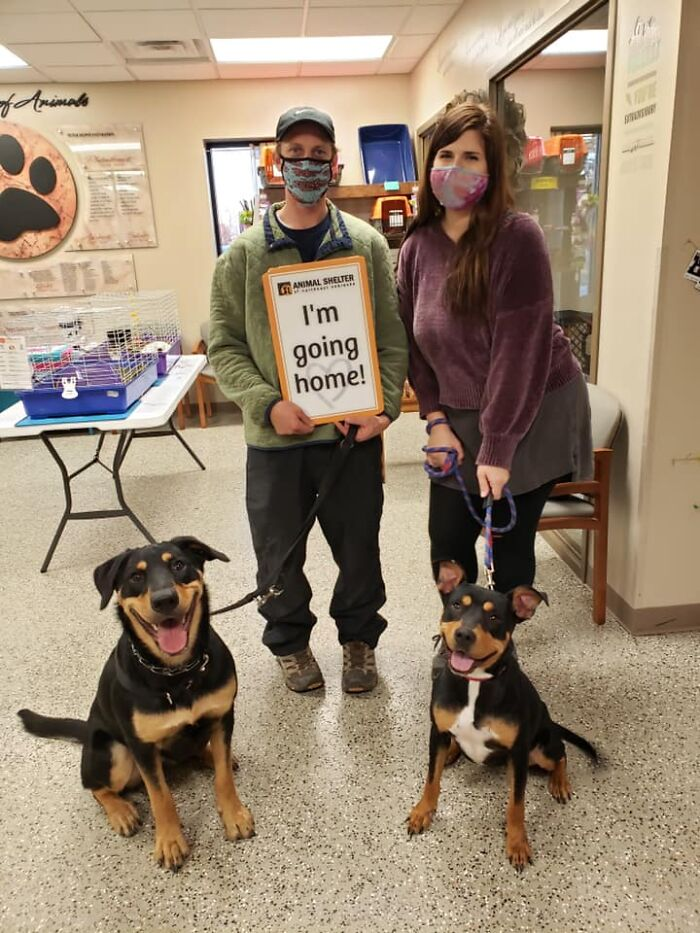 Not Sure Who's Happier; Penny, On The Left, Who's Getting A New Best Friend... Or Rosie, Who Made It All The Way From A Kill Shelter In Oklahoma, And Is Now Coming Home With Us In Nebraska