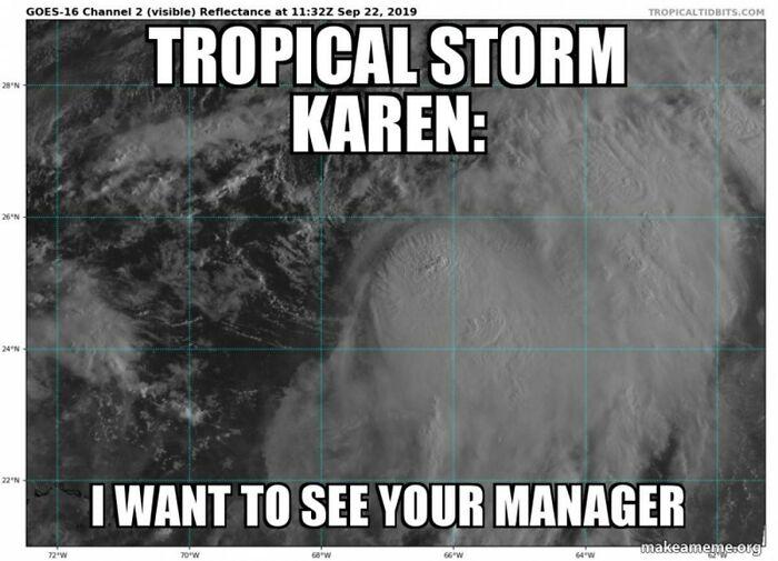 The Perfect Karen