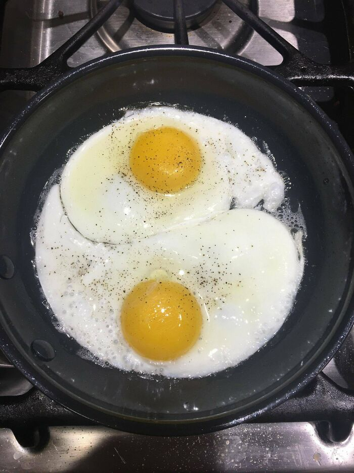My Eggs Came Out Very Balanced This Morning