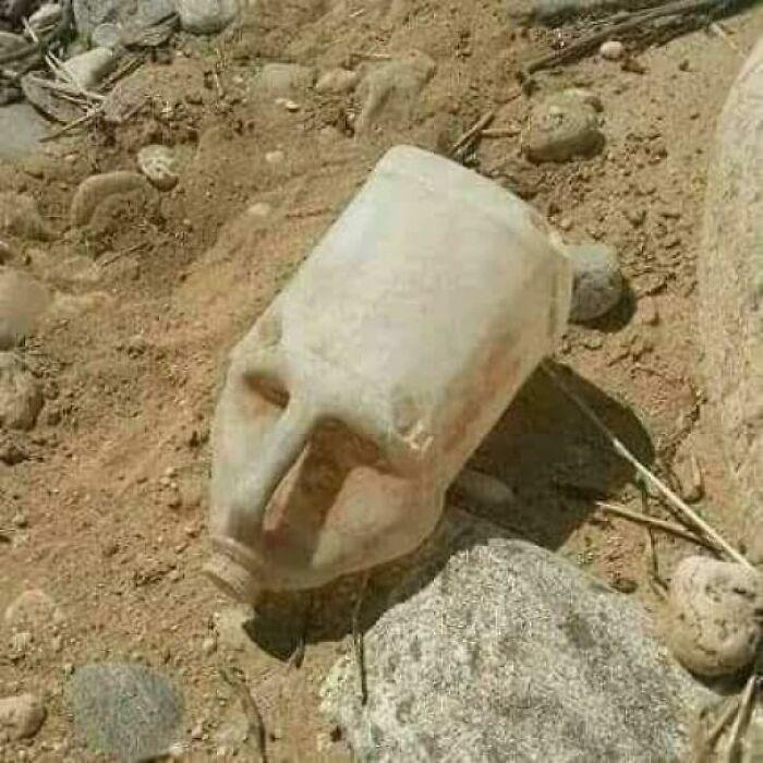 The Head Of Great Pharaoh Cleopatra