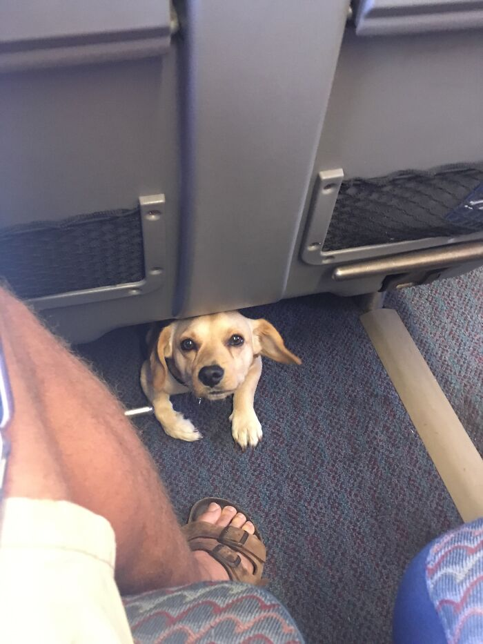 I Made A New Friend On The Train