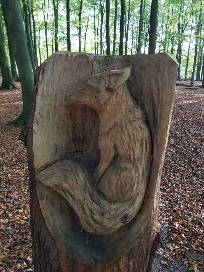 I Found This Carved Fox Inside A Tree Stump, In A Forest Close To My Home