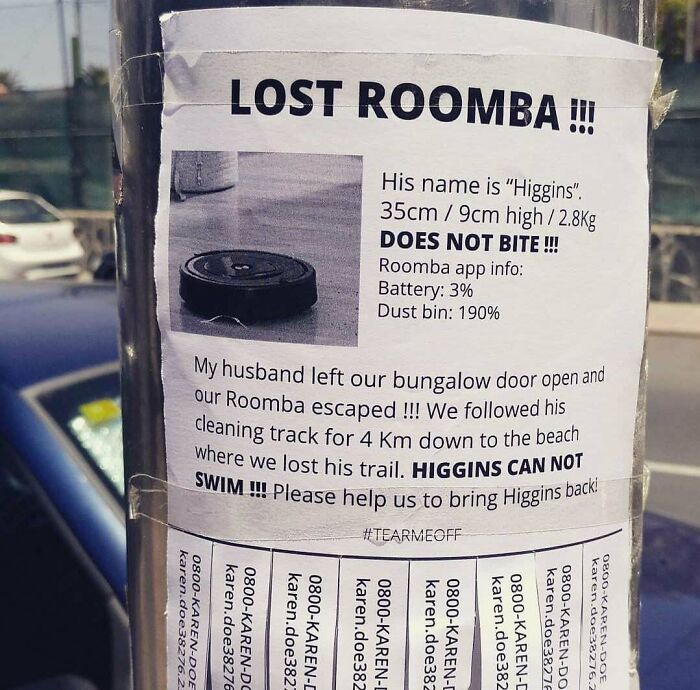Roomba On The Run!