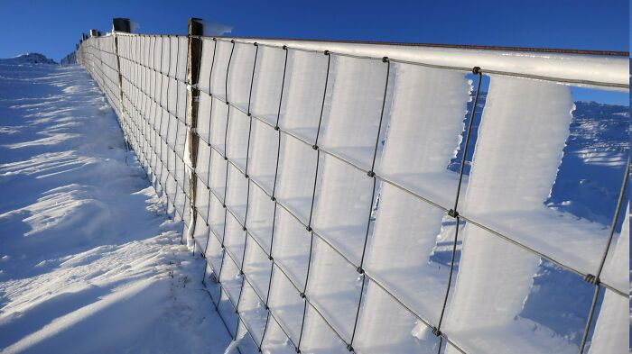 When Constant Winds And Ice Meet A Fence