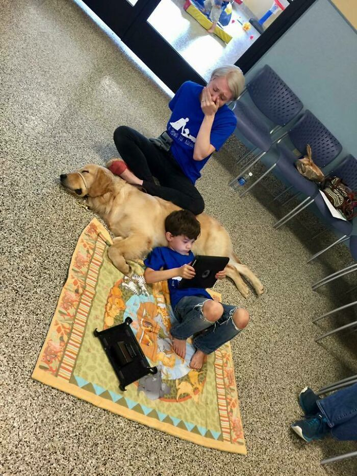 An Autistic Boy, Who Can't Be Touched, Connects With A Service Dog, As His Mom Bursts Into Tears Of Hope And Joy