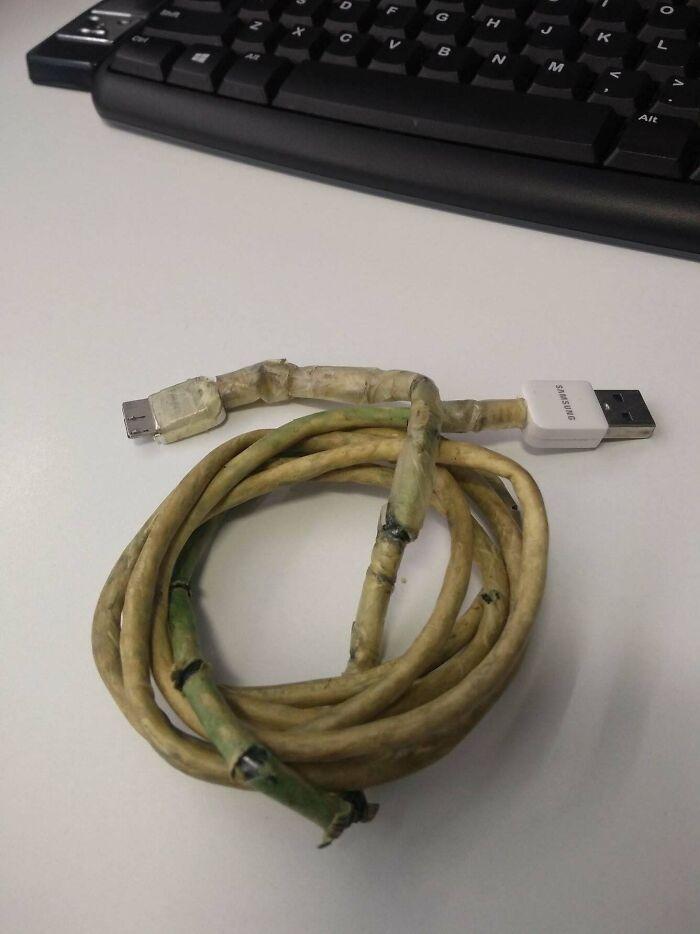 Encontré esto en el escritorio de un usario