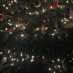 alex but festive