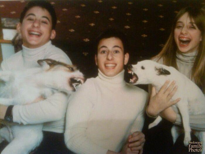 Estábamos haciendo la foto navideña familiar pero los perros no estaban de humor. La tenemos colgada junto a la entrada de casa