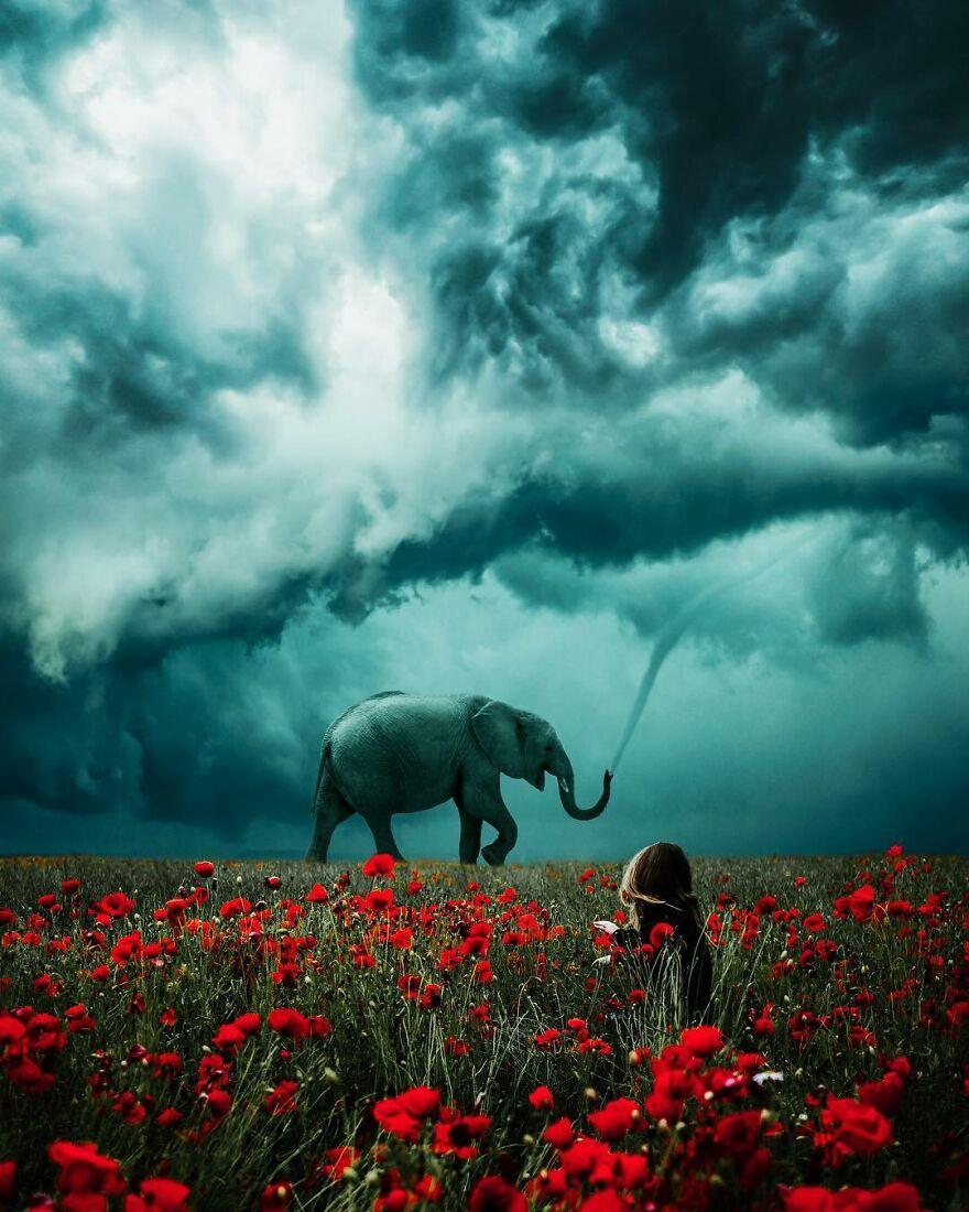 Elephant Trunk Tornado