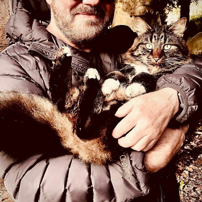 Ricky Gervais Adopts A Cat And She's Practically All That He Posts About On Instagram Now