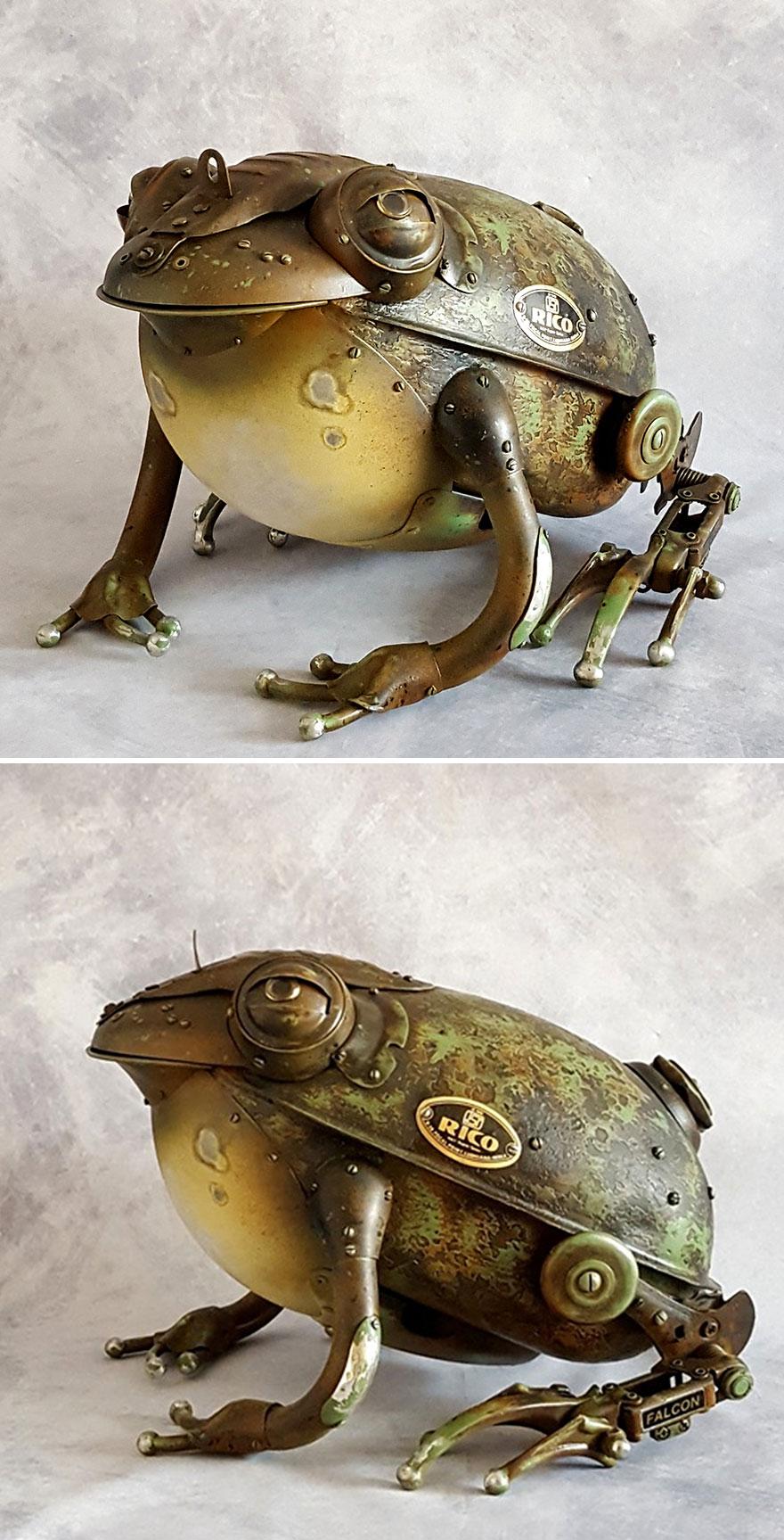 "Frog ,,rico"""