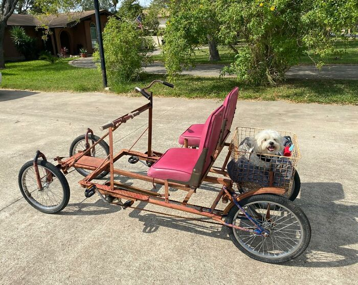 Our Neighbors Sold Us This Bike They Made From Different Bikes Welded Together On A Steel Frame. The Seats Are Boat Seats. They Named Her Frankie, And We Already Love Her!
