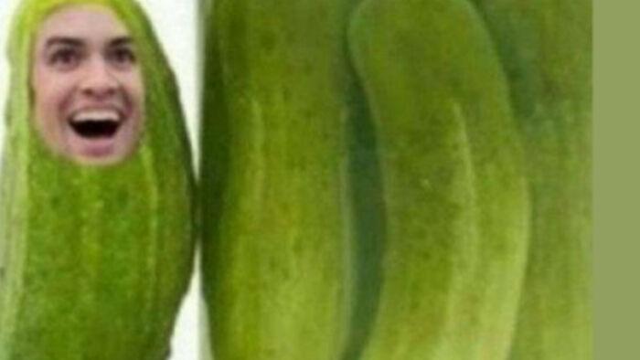 Hey Im A Pickle