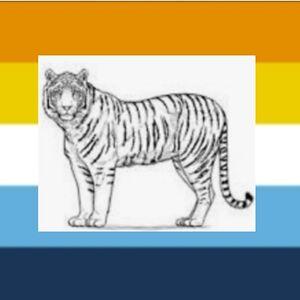 Aroace tiger