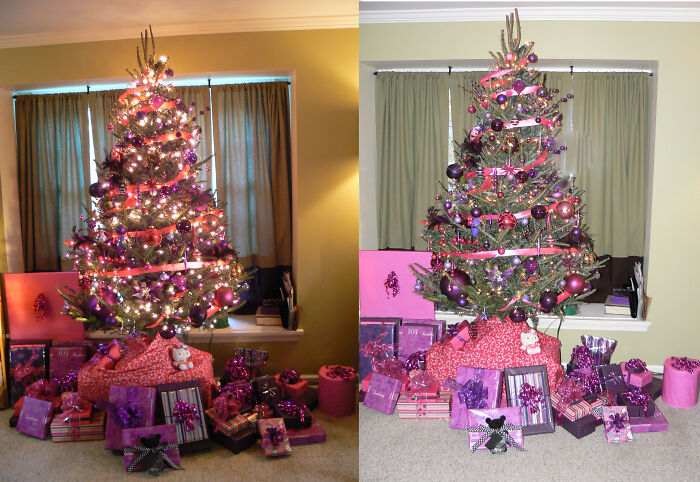 Purple And Pink Tree - I Put The Pictures Side By Side - Flash vs. No Flash