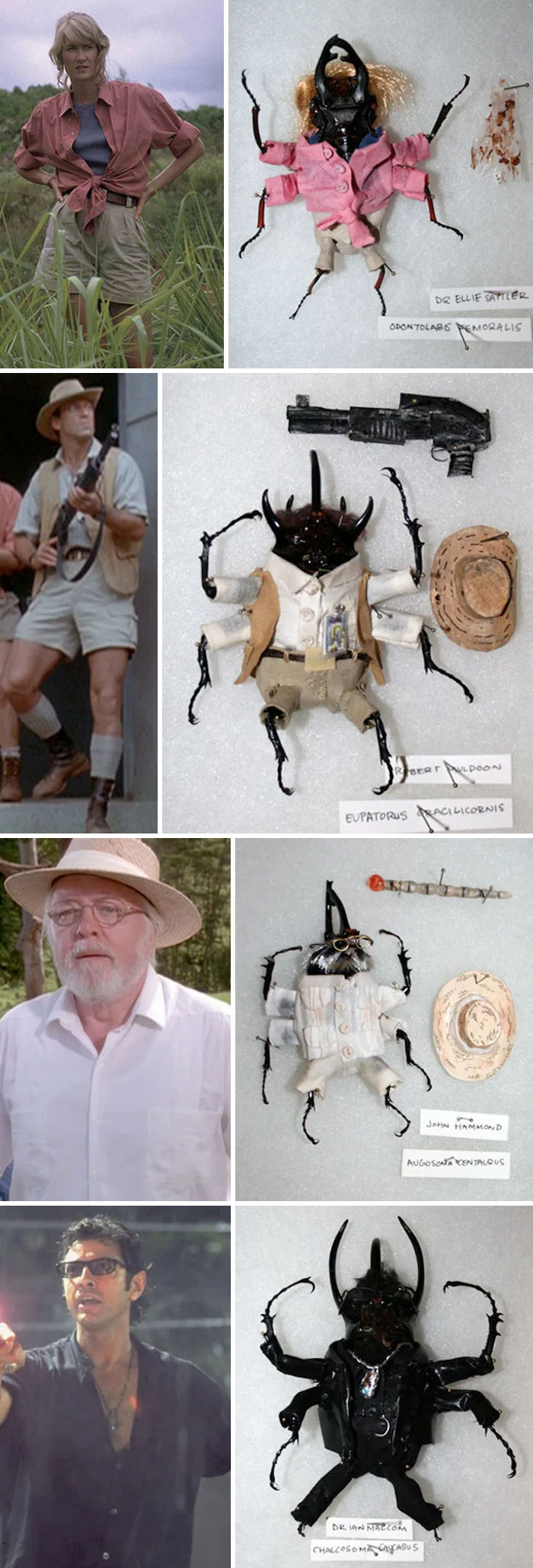 Someone Was Selling Dead Beetles Dressed Up As Jurassic Park Characters On Etsy