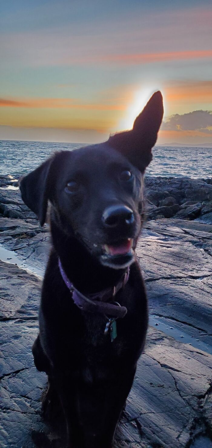 When The Sun Sets Behind Nica And The Wind Blows Her Ear Up, I Get This Year's Money Shot