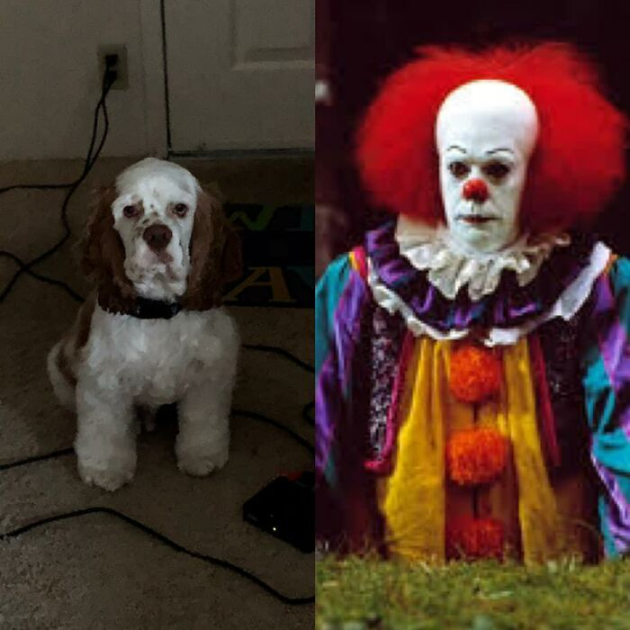 He Doesn't Always Look Like Pennywise But Still Always Looks Goofy
