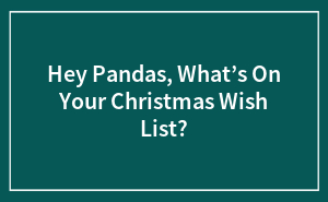 Hey Pandas, What's On Your Christmas Wish List?