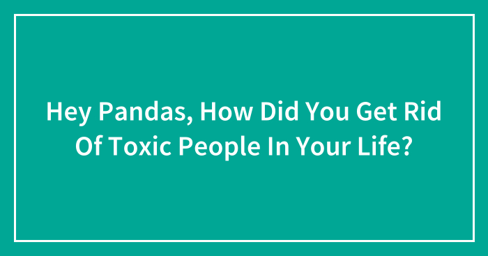 Hey Pandas, How Did You Get Rid Of Toxic People In Your Life? (Closed)