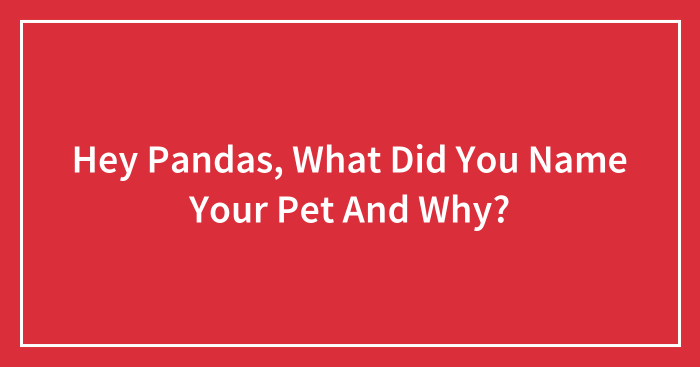 Hey Pandas, What Did You Name Your Pet And Why? (Closed)