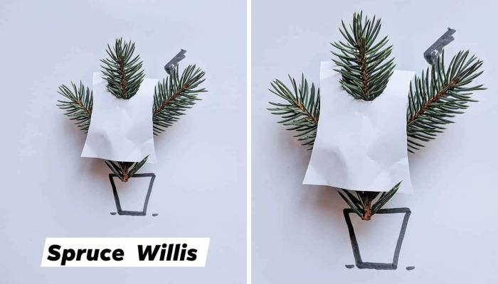 I Turn Famous Bruces Into Spruces (8 Pics)