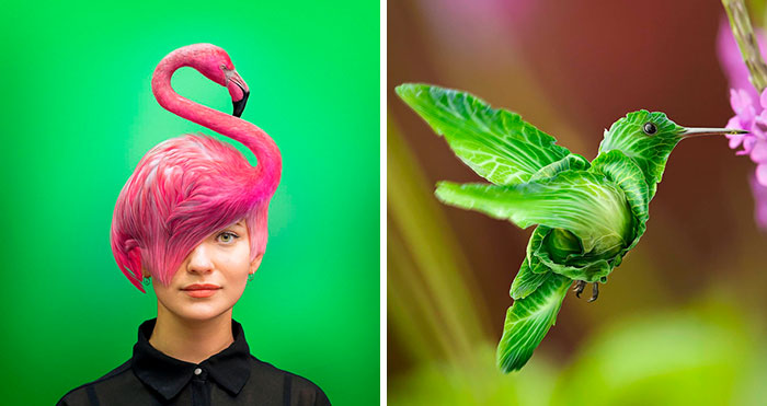 Here Are 66 Surreal Photoshops That Combine Completely Different Objects