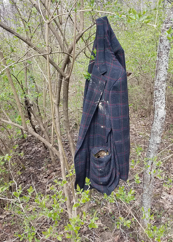 An Old Jacket Hanging In The Woods With A Bird's Nest Built In The Pocket