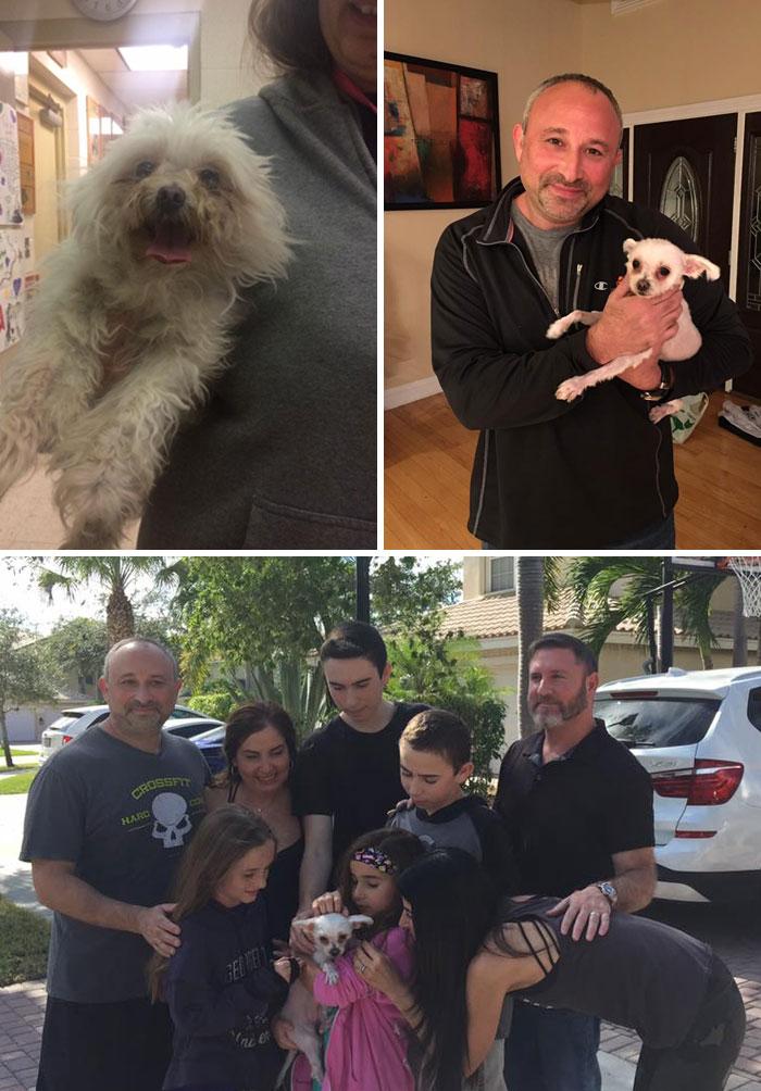 Una familia de Florida se reencuentra con su perra desaparecida tras 3 años de búsqueda. Su perra Bella había sido recogida como una vagabunda y fue encontrada en un refugio de animales en Nueva Jersey