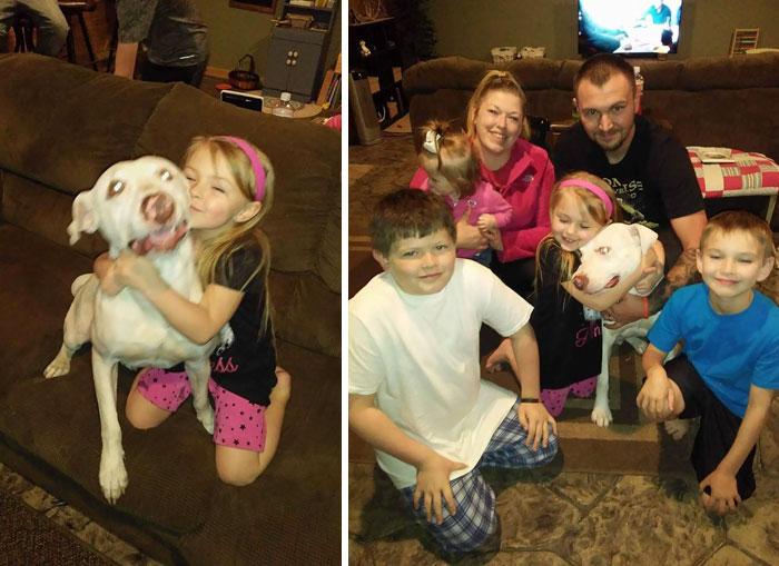 4 días después de la súplica de una niña por su perro desaparecido, le devuelven a su mejor amigo
